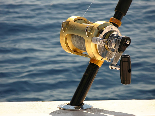 Types of Fishing Reels – Choosing the Right One