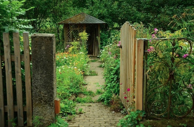 Cottage Garden - What Is It And How To Create?