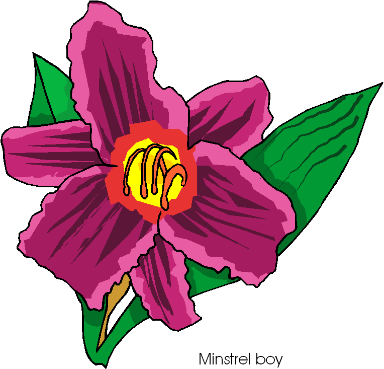 clip art flowers microsoft - photo #10