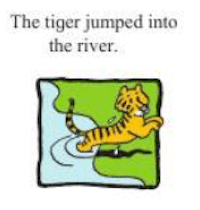 Change the meaning of the sentence by changing the preposition.  The tiger jumped into the river.