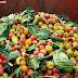 Alternativas para o tratamento de resíduos orgânicos: vantagens e desvantagens