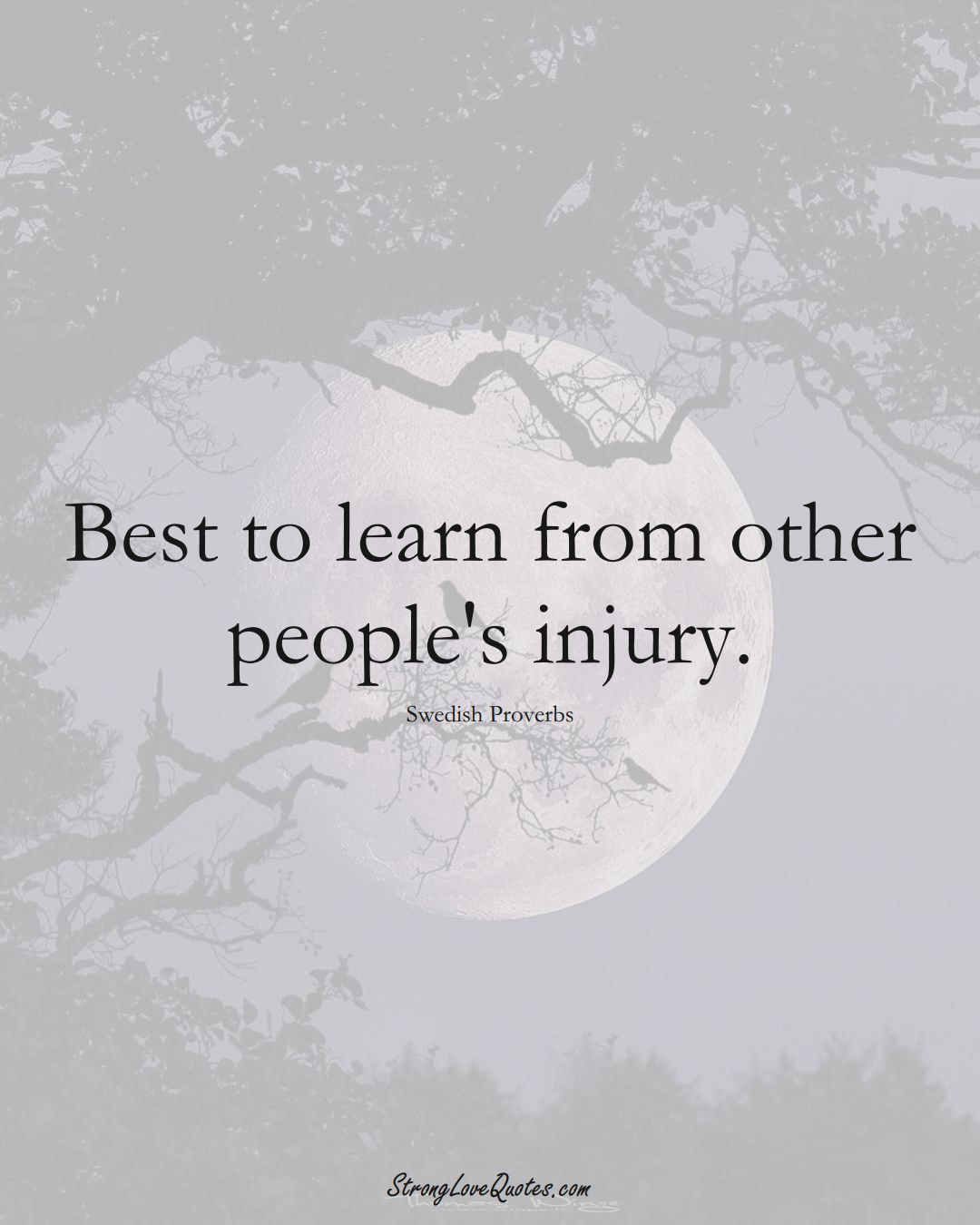 Best to learn from other people's injury. (Swedish Sayings);  #EuropeanSayings