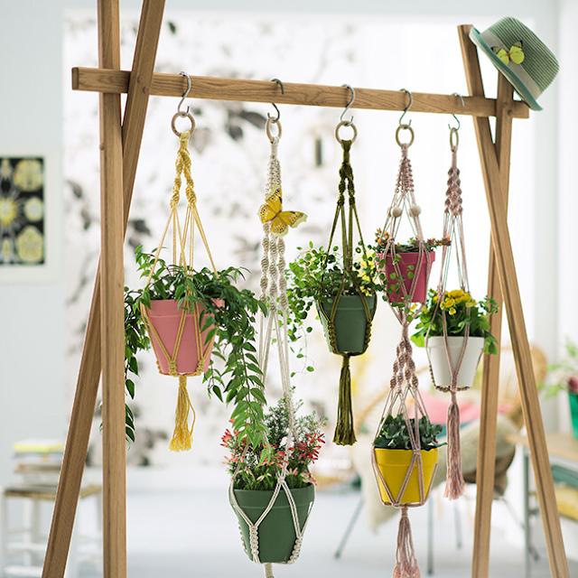 Ide Menata Jenis Bunga Gantung di Teras Rumah Agar Terlihat Cantik