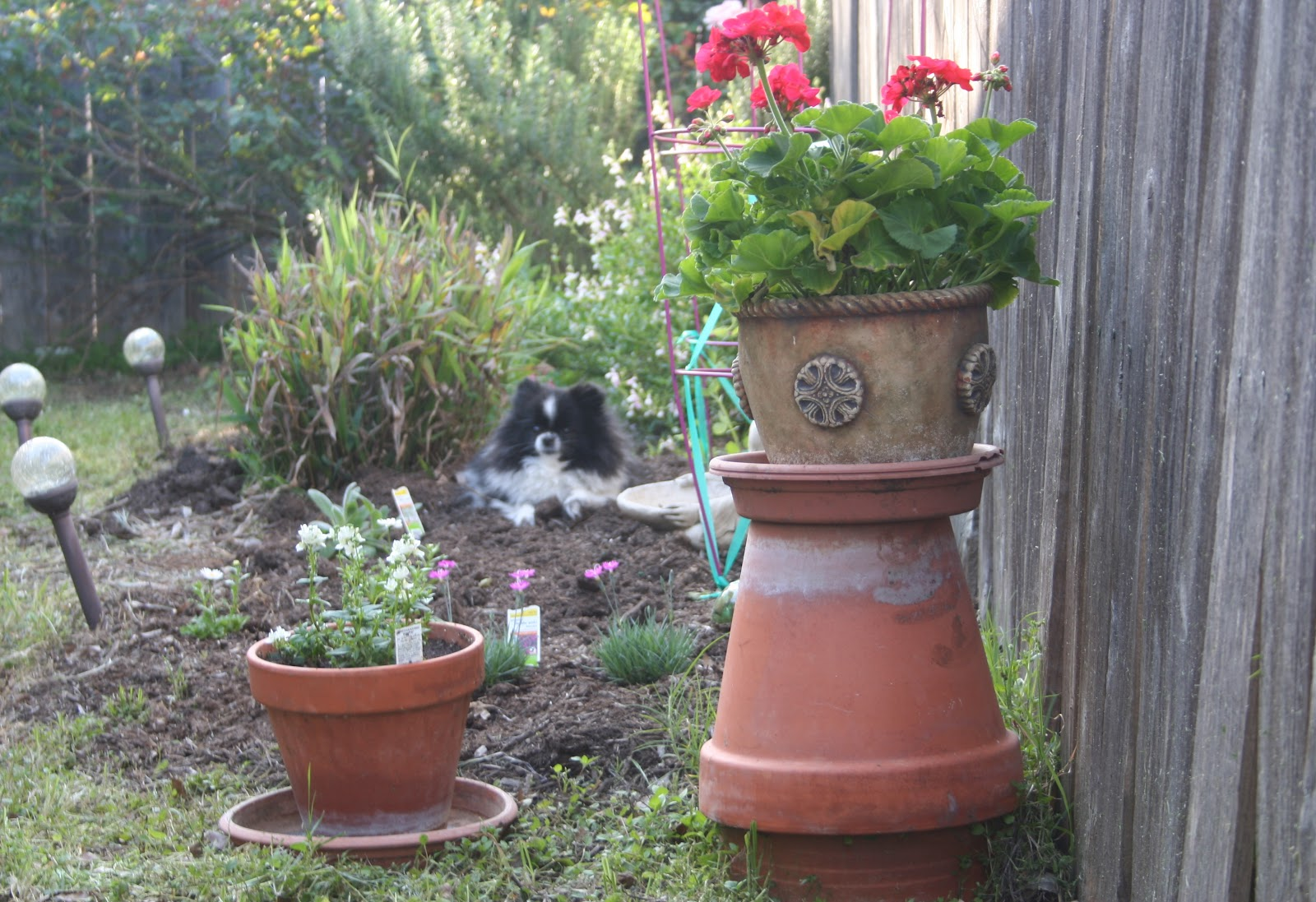 My Secret Garden: Misty Poe: My Little Secret Garden