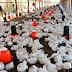 Aumento de insumos entre un 30% y 50% provoca alzas en los precios del pollo