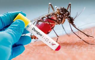 Brasil estar próximos a um novo surto de dengue disse especialista