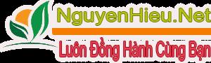 Nguyenhieu.Net