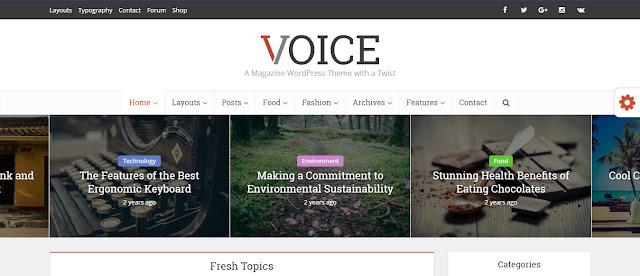 Voice Wordpress Theme for eNews and Online Magazine