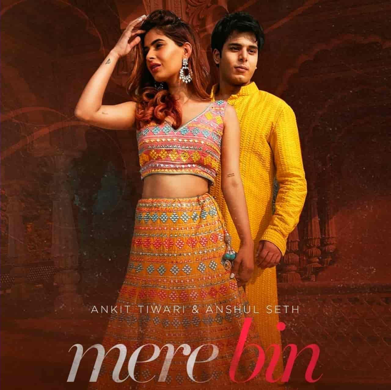 Mere Bin Hindi Song Image Features Karishma Sharma Sung By Ankit Tiwari