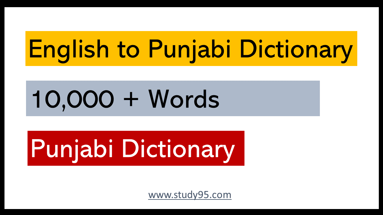 Punjabi to English Dictionary Book
