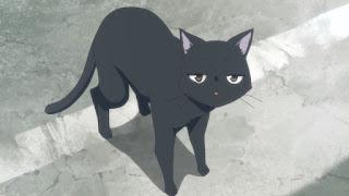 Czarny kot głównej bohaterki Flying Witch