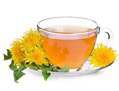 Experiment with dandelion tea