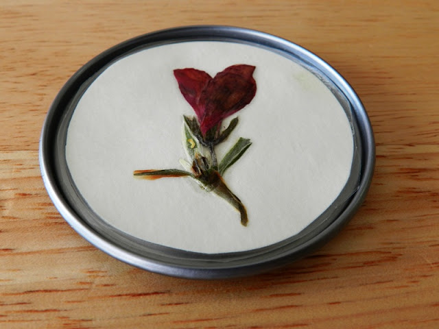 pressed flower magnets