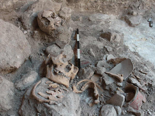 Isotope analysis from 1,400-year-old Maya mass grave of Uxul points to prisoners of war