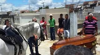 Cavalo acompanha velório
