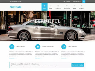 Nictitate wordpress free theme