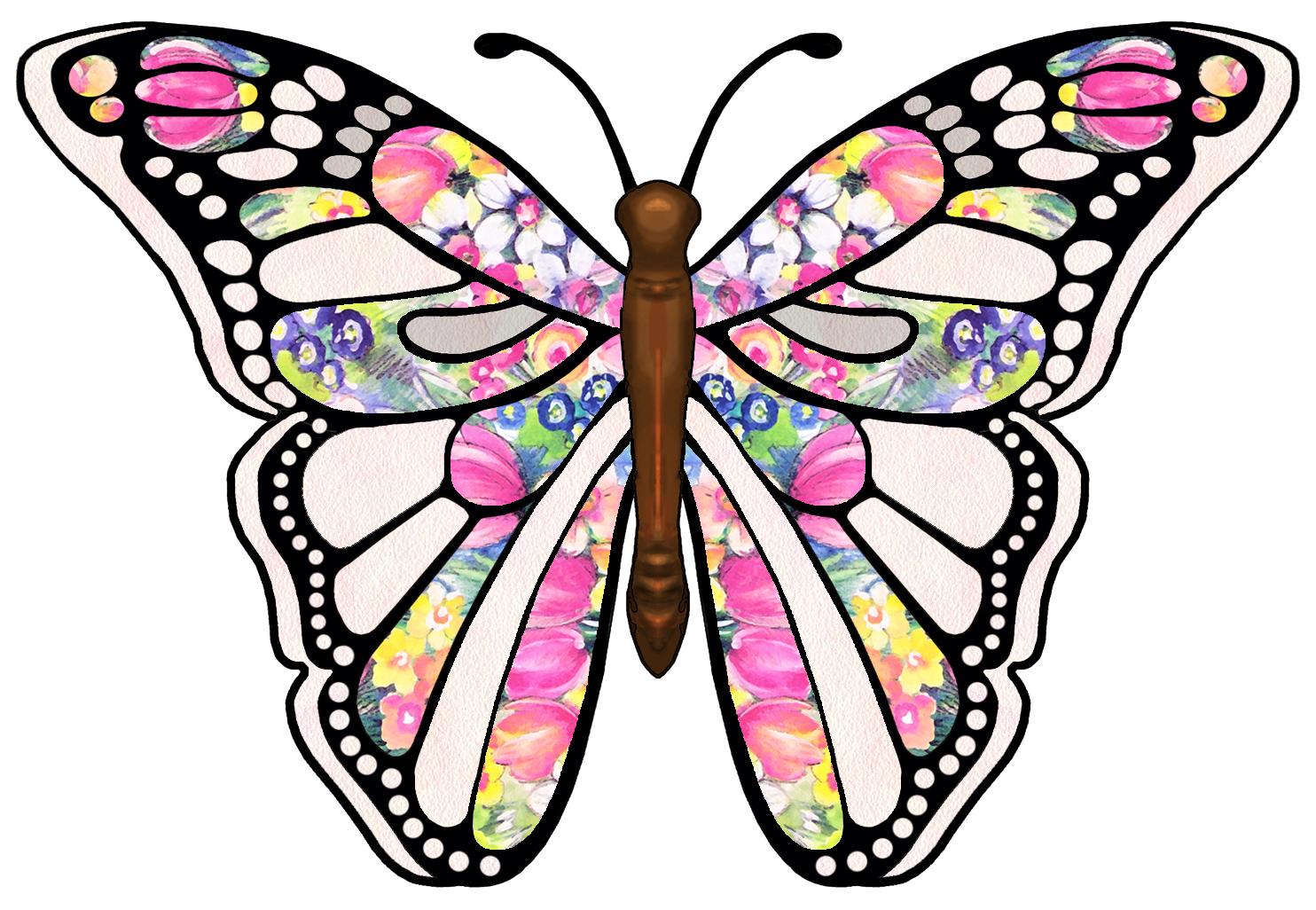 Butterfly essays