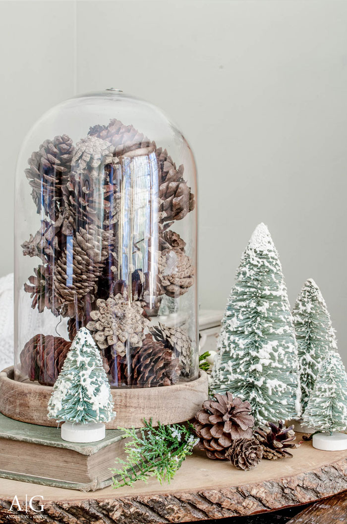 Simple winter decorating....fill a cloche with pinecones gathered from the yard.  |  www.andersonandgrant.com