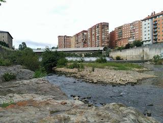 Río Nervión a su paso por el barrio de La Peña, Bilbao, Bizkaia