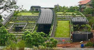 ELT India Lifestyle Gardening