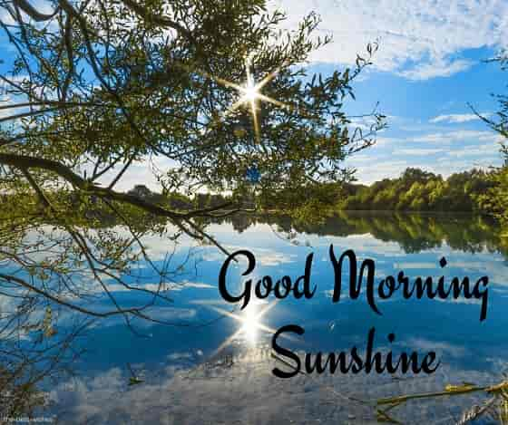 good morning sunshine river side view picture