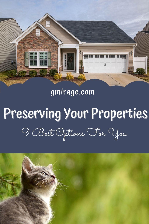 Property, cat yard