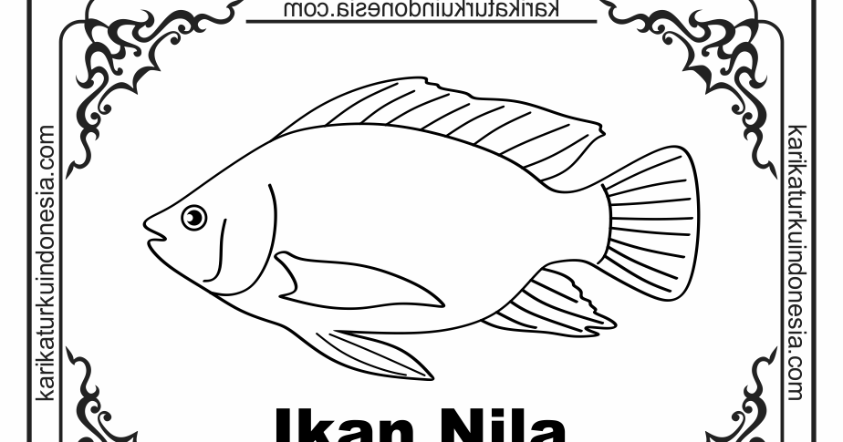Karikaturku Indonesia Mewarnai Gambar Ikan Air Tawar