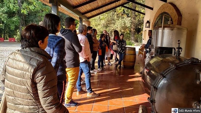Tour na Vinícola Concha y Toro - Vinícolas chilenas