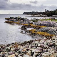 Photos of Ireland: coastline near Parknasilla on the Ring of Kerry