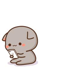 avatar mèo dễ thương
