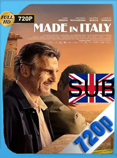 Made in Italy (2020) HD [720P] latino [GoogleDrive] DizonHD