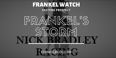 Frankel Watch 2019: Frankel's Storm (2yo) Mark Johnston in the ownership of Nick Bradley Racing 13