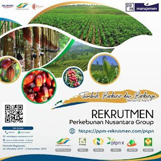Rekrutmen Perkebunan Nusantara Group