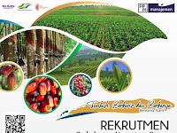 Rekrutmen Perkebunan Nusantara Group (Pendaftaran : 26 Oktober s.d 02 November 2019)