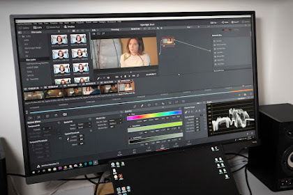 Download Davinci Resolve Lama!