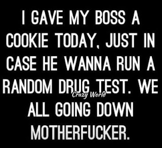 Gave my boss a cookie today...
