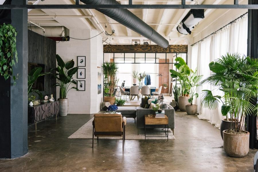 Loft urządzony w trendzie urban jungle, wystrój wnętrz, wnętrza, urządzanie domu, dekoracje wnętrz, aranżacja wnętrz, inspiracje wnętrz,interior design , dom i wnętrze, aranżacja mieszkania, modne wnętrza, loft, styl loftowy, styl industrialny, urban jungle, miejska dżungla, rośliny, kwiaty, zieleń, salon