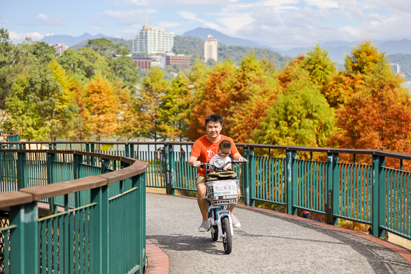 南投日月潭向山落羽松,湖光山色搭配自行車道和雙心花園美不勝收