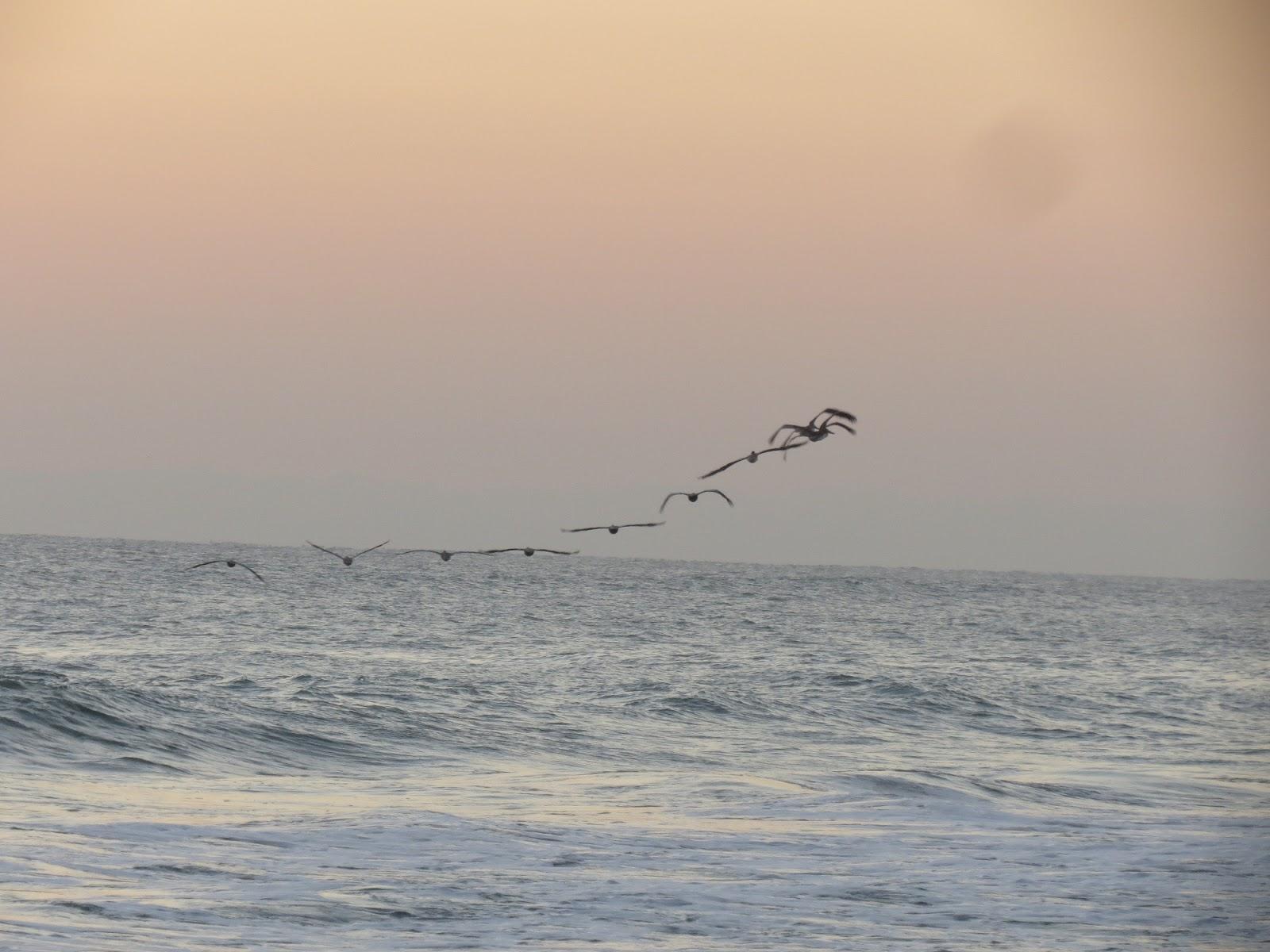 Distance Vero Beach To Sunrise