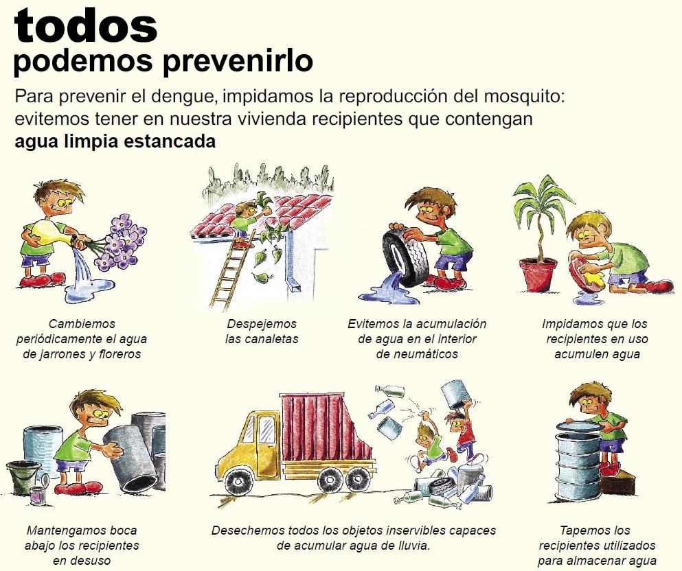 Todos podemos prevenir el dengue