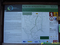 PR AS-275 Bosque de Cea