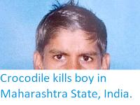 https://sciencythoughts.blogspot.com/2019/05/crocodile-kills-boy-in-maharashtra.html