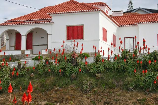 Ericeira - Portugal