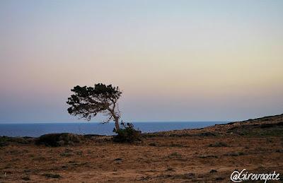 paesaggio sud karpathos