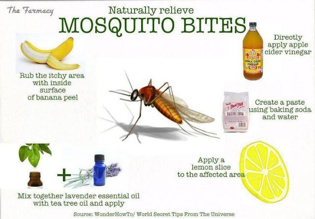 How to Treat Mosquito Bites