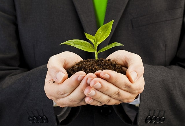 tips creating eco-friendly business