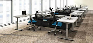 Ergonomic Work Floor with Electric Desks