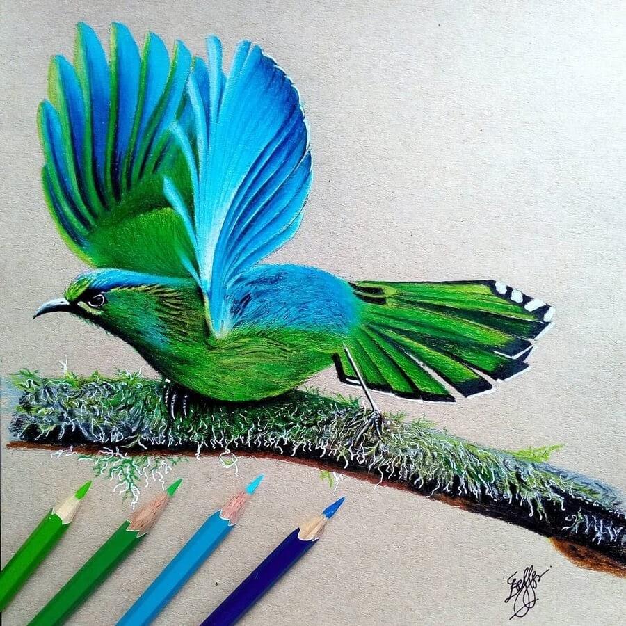 09-Blue-and-green-bird-Bele-www-designstack-co