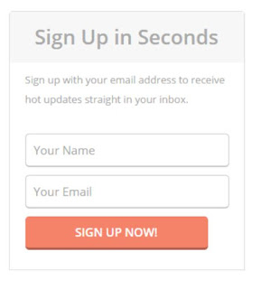 1. Email Subscription Box Widgets