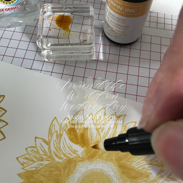 Faux Alcohol Coloring Technique | Nature's INKspirations by Angie McKenzie